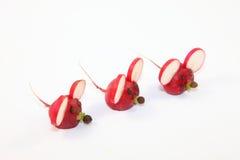 Rzodkwie - mysz Zdjęcie Royalty Free