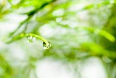rzuć wody Fotografia Royalty Free