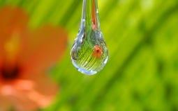 rzuć wody Zdjęcie Stock