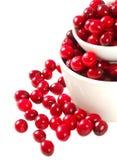 rzucać kulą cranberries obraz stock
