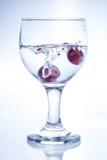 Rzucać dwa winogrona Zdjęcia Royalty Free