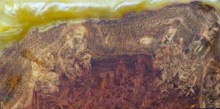 Rzucony epoxy żywica Stabilizuje Afzelia burl egzotycznego drewnianego czerwonego żółtego tło, Abstrakcjonistycznej sztuki obrazk zdjęcia royalty free