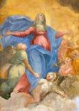 Rzym - fresk Niepokalany poczęcie Giuseppe Vasconio (wcześnie 17 cent ) w bazylice Di Sant Agostino (Augustine) Fotografia Royalty Free