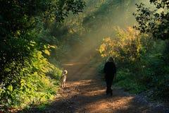 Rzym, willi Ada park Fotografia Royalty Free