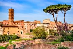 Rzym, Włochy - Romański forum Obrazy Royalty Free