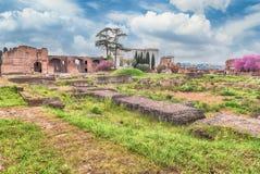 Rzymianin ruiny na palatynu wzgórzu w Rzym, Włochy fotografia royalty free