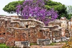 Rzymianin ruiny w Ostia Antica Zdjęcie Royalty Free