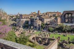 Rzymski forum w Rzym, Włochy obrazy royalty free