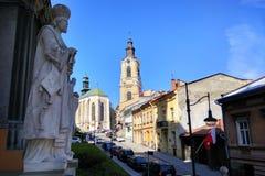 Rzymskokatolicka katedra w Przemyskim, Polska obraz stock