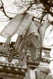 Sánscrito blanco y negro Fotos de archivo
