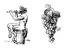 Sátiro no vinho do tambor 0f que joga a flauta e o grupo de uvas Vetor ilustração do vetor