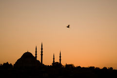 Süleymaniye Mosque silhouetted at sunset, Istanbul Royalty Free Stock Image