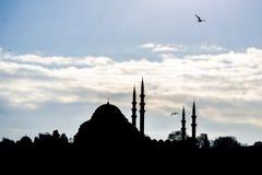 SÃ ¼ leymaniye清真寺伊斯坦布尔 免版税库存照片