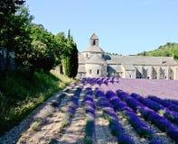Sénanque abbotskloster i Provence Arkivbilder