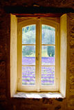 Sénanque abbotskloster i Provence royaltyfri bild