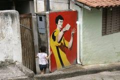São Luis tun Paraitinga Brasilien Stockbilder