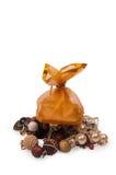 säck för smycken för closeupgåva skjuten guld- Royaltyfri Fotografi
