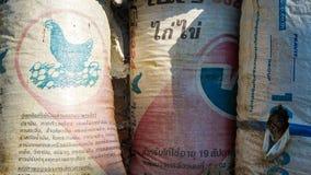 Säckar för feg matning Arkivfoto