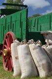 Säcke des Weizen-Mageren gegen Lastwagen stockfotos