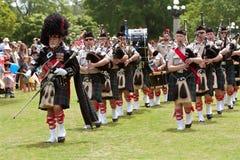 Säckpipamusikbandet marscherar och spelar på vårfestivalen arkivfoton