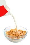 Sädes- flakesfrukost royaltyfri bild