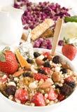 sädes- granola Royaltyfria Bilder