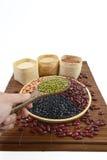 Sädes- korn och fröbönor som är användbara för hälsa i wood skedar på vit bakgrund Arkivbild