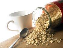 sädes- nutritious oats royaltyfri fotografi