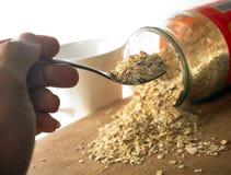 sädes- nutritious oats Royaltyfri Foto
