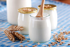 sädes- yoghurt arkivbild