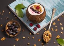 Sädesslag med kokosnöten och röda bär - bästa sikt royaltyfria foton