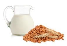 sädesslagflakes mjölkar royaltyfri fotografi