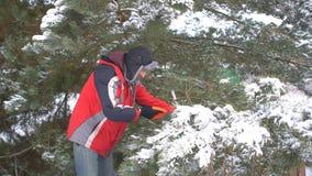 Sägende Kiefernniederlassungen des attraktiven Mannes und Suchen zur Kamera in seinem schneebedeckten Garten des Winters nach fro stock video footage