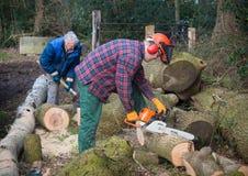 Sägendes Holz der Leute Stockfotografie