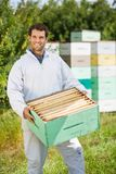 Säker Beekeeper Carrying Honeycomb Crate Arkivfoton