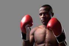 Säker boxare. Fotografering för Bildbyråer