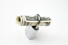 säker dollar Arkivbild