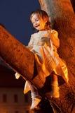 Säker liten flicka i tree royaltyfri foto