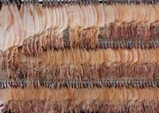 Sälja den torkade tioarmade bläckfisken Royaltyfri Foto