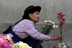 sälja för 2 blommor royaltyfria foton
