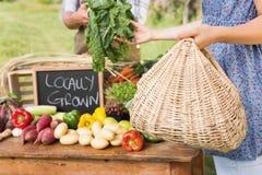 Sälja för bonde hans organiska jordbruksprodukter Fotografering för Bildbyråer
