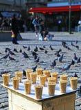 sälja för fågelfrö royaltyfria bilder