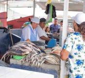 Sälja fisken i marknaden Närbild ecuador royaltyfria foton
