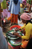 Sälja fisken på ett traditionellt marknadsföra i Lombok Royaltyfria Foton
