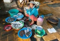 Sälja havsmat i Vietnam Fotografering för Bildbyråer