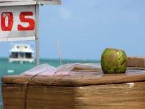 Sälja kokosnötter på en brasiliansk strand, med en lyxig kryssning i bakgrunden Royaltyfria Bilder