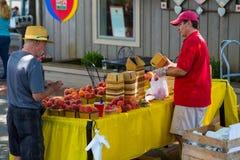 Sälja nya valda Lancaster County persikor Royaltyfri Bild
