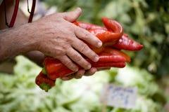 Sälja röda peppar Royaltyfria Bilder