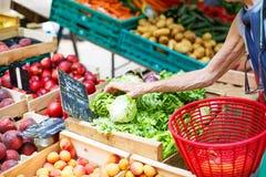 Säljande och köpande ost på marknadsställe i Provence, Frankrike fotografering för bildbyråer