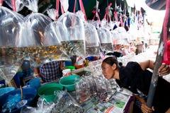 Säljare shoppar på Chatuchak tillbringar veckoslutet marknadsför Royaltyfri Foto